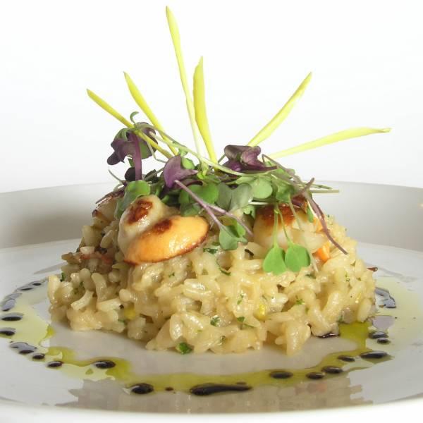 New Zealand Restaurant Dining Guide